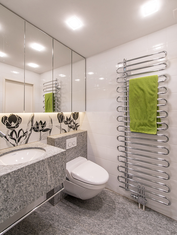 Neues Badezimmer Moderner Heizkörper